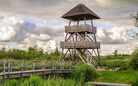 Vogelkijkhutten in Nederland en Belgie